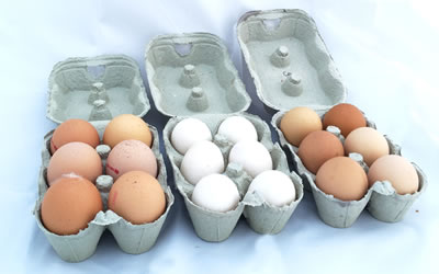Eggs in boxes